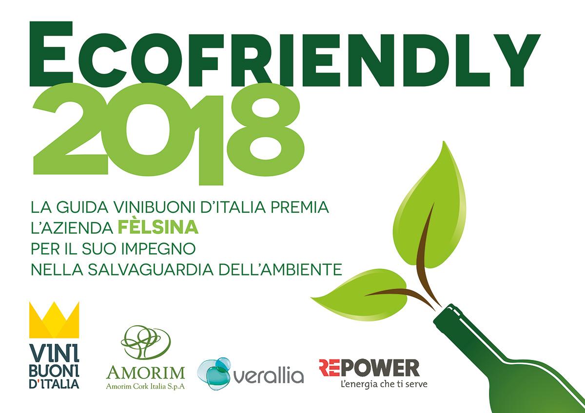 Ecofriendly 2018 chianti classico sangiovese vino felsina for Progetti di edilizia eco friendly