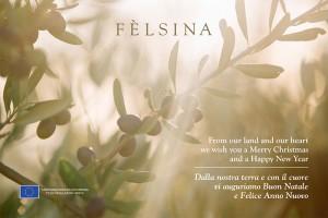 natale2018.felsina