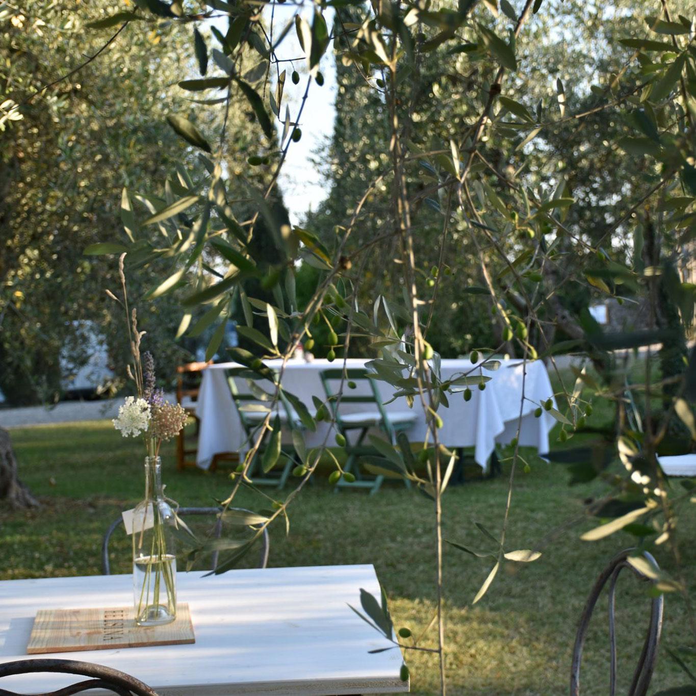 oliveta-felsina-cantine-aperte