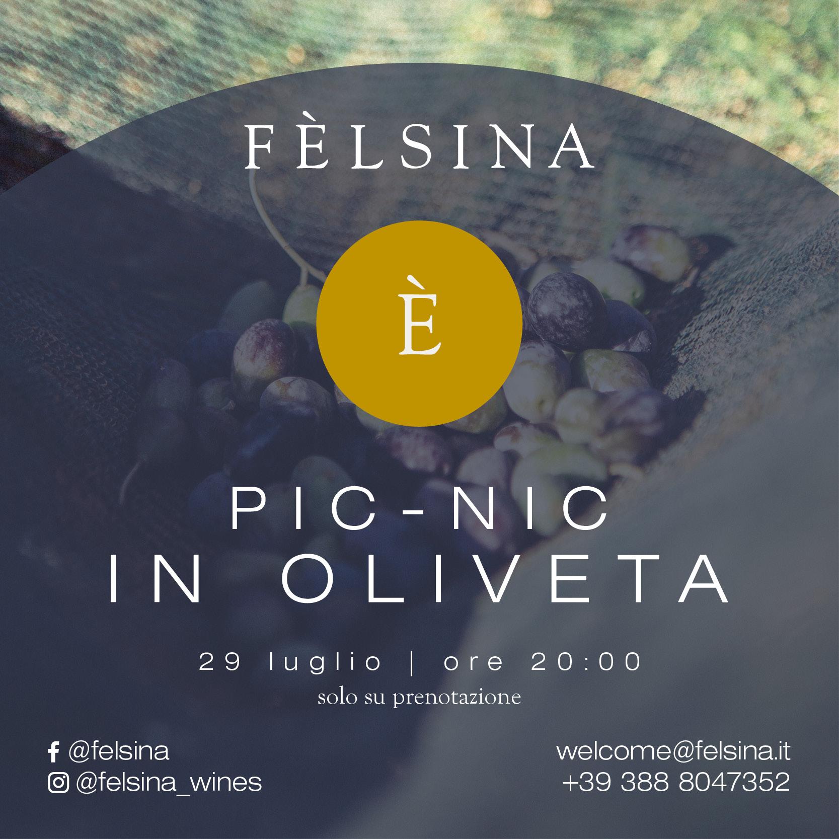 felsina_pic-nic-eventi-2021-29-luglio_