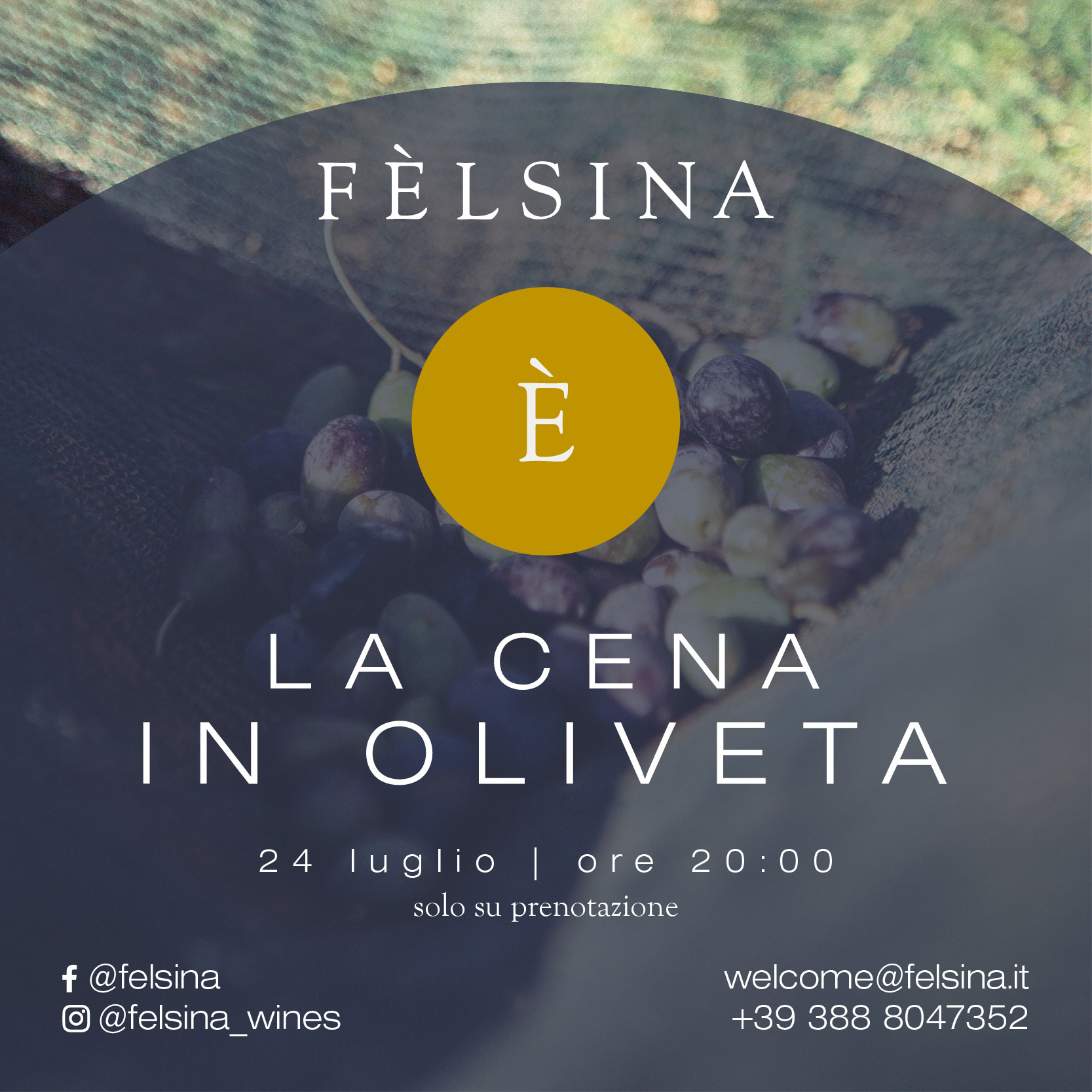 felsina_post_2021_eventi5